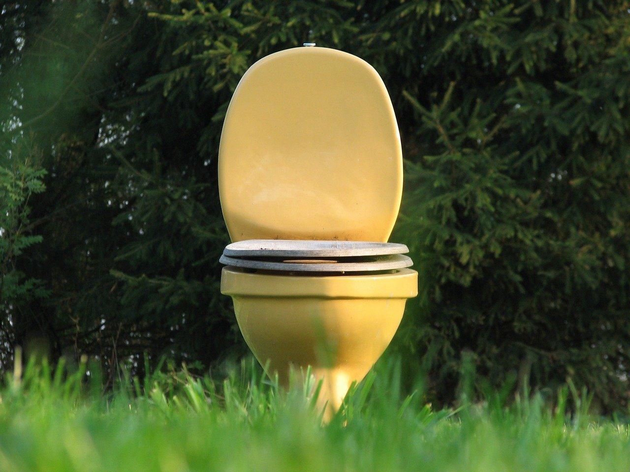 toilette eaux usées fosse septique